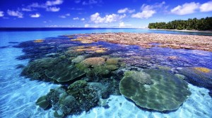 Coral-Island-Marshal-HD-1024x576